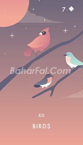 کارت پرنده